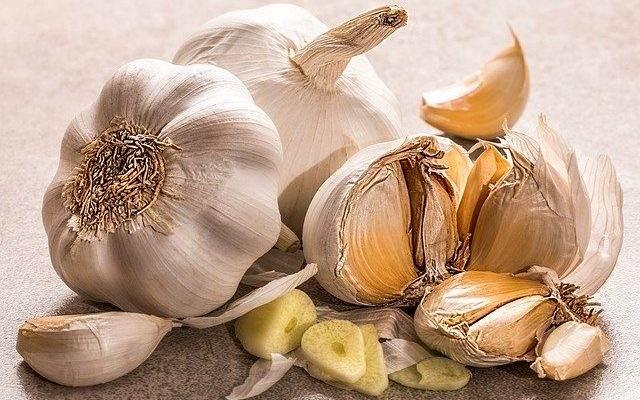 How to Make Easy Garlic Aioli